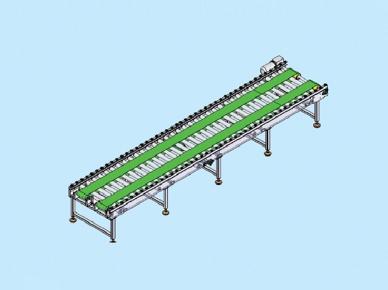 double chain roller conveyor GX